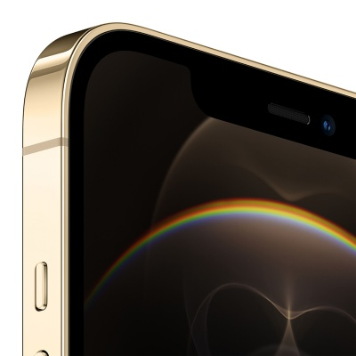 Apple iPhone 12 Pro Max Gold 256GB